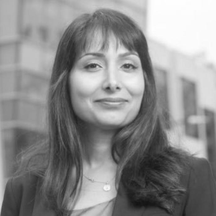 Veena Dubal