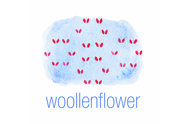 woollenflower