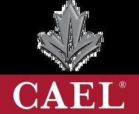 CAEL Test