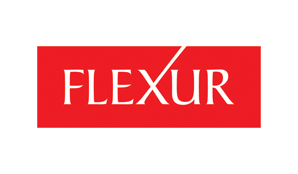Flexur Systems Inc.