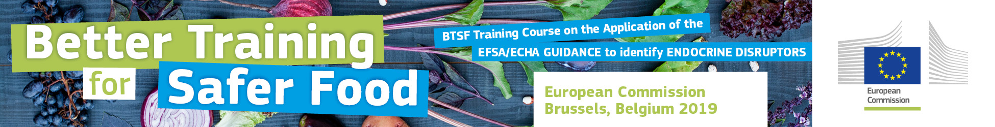 "BTSF Training Course on the Application of the ""EFSA/ECHA GUIDANCE to identify ENDOCRINE DISRUPTORS"""