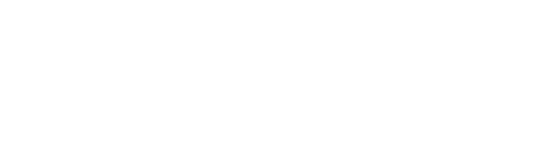 Technology Leadership Summit 2020