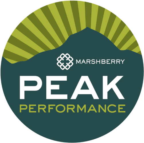 20 MarshBerry Peak Performance Seminar