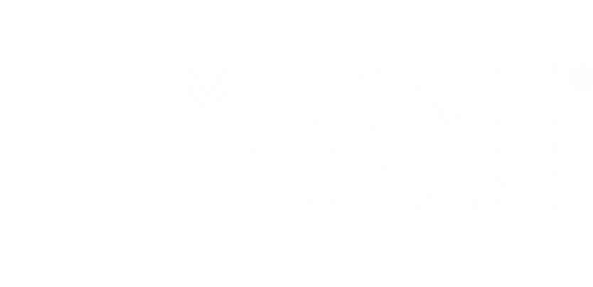 Micro Focus China RPA