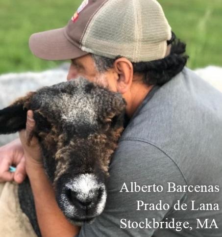 Alberto Barcenas