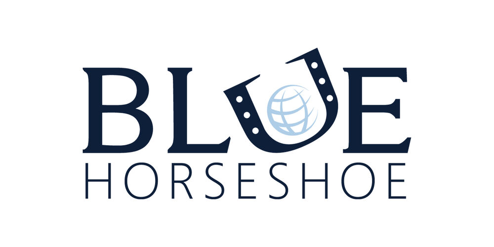 Blue Horseshoe Solutions, Inc