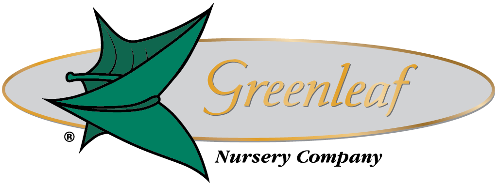 Greenleaf Nursery Company