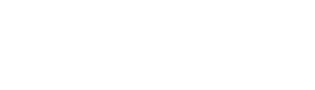 NYC DOE Office of the Chief Academic Officer