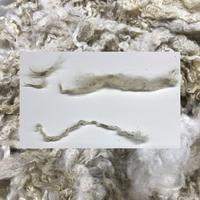 Broken, Tender, and Dirty Fleece
