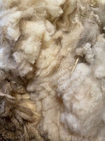 The Dirty Truth:  Skirting and Prepping a Fleece