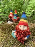 Rhinebeck Gnome 2020 - 12:00 pm