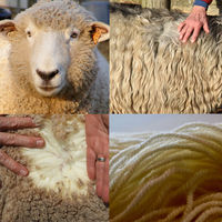 What's Your Type? A Framework for Understanding Wool and Breeds