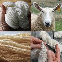 Breed Specific Swatching for Knitters